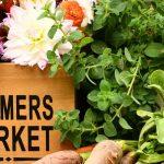 Lafayette Farmers and Artisan's Market